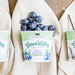 Organic Blueberry Yogurt, 6oz - 081312300033